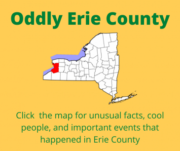 Oddly Erie County